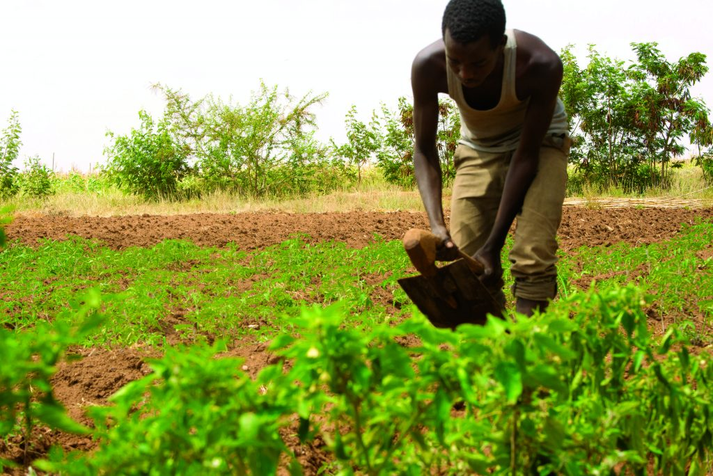 Aid groups warn COVID lockdown fueling famine